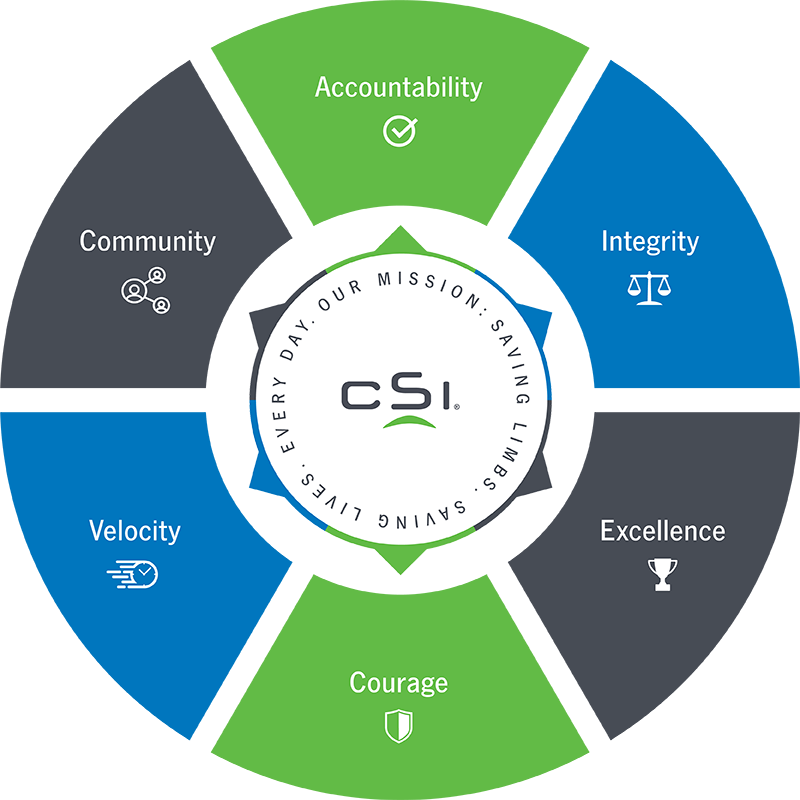 CSI core values
